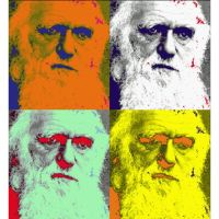 """ACTIVITY 1 – """"Myths and Misconceptions"""" and """"What is Darwin's Theory of Evolution?"""""""